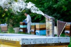 El apicultor trabaja en una colmena cerca de las colmenas Chimenea de las remolachas Concepto de apicultura Imágenes de archivo libres de regalías