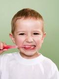 El aplicar con brocha de dientes Fotos de archivo libres de regalías
