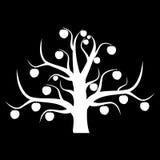 El apple-árbol inusual Fotografía de archivo libre de regalías
