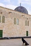 El Aqsa mosque Stock Image