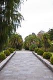 El arboreto del parque fotos de archivo