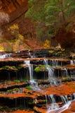 El arcángel conecta en cascada durante caída en el barranco hermoso de la ranura del subterráneo en Zion National Park Fotos de archivo