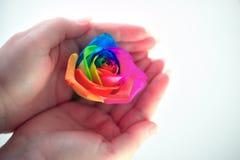 El arco iris entre los fingeres Imagen de archivo libre de regalías