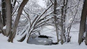 El arco nevoso Fotografía de archivo libre de regalías
