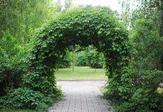 El arco verde del parque Fotos de archivo libres de regalías