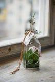 El arreglo de flores floristry Imágenes de archivo libres de regalías