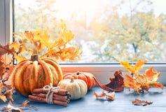 El arreglo del otoño con las calabazas y el amarillo se va por la ventana Fotografía de archivo