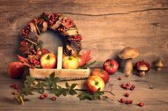 El arreglo del otoño con las manzanas sabrosas, las setas y la caída enrruellan Imágenes de archivo libres de regalías
