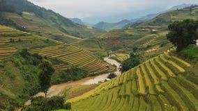 El arroz coloca en colgante de MU Cang Chai, YenBai, Vietnam Imagen de archivo