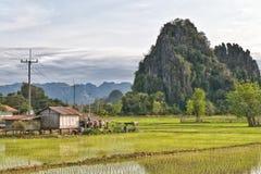 El arroz coloca la colina de la montaña del karst y una pequeña choza Fotos de archivo