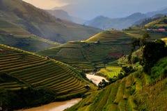 El arroz de las terrazas coloca en la montaña en el noroeste de Vietnam Foto de archivo