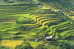 El arroz hermoso del paisaje coloca en colgante de MU Cang Chai Imagenes de archivo