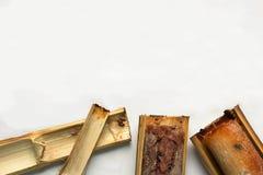 El arroz pegajoso asó en el fondo blanco de dos piezas de bambú imágenes de archivo libres de regalías