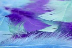 El arte azul, verde y púrpura empluma el fondo Imágenes de archivo libres de regalías