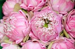 El arte del loto plegable Foto de archivo libre de regalías