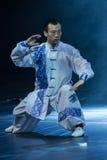 Artes marciales. Festival de primavera 2013. Dublín Fotos de archivo