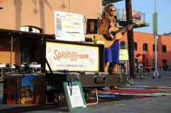 El artista de la calle toca la guitarra Imagen de archivo