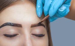 El artista de maquillaje aplica la alheña de la pintura en desplumado previamente, diseño, cejas arregladas imagen de archivo