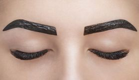 El artista de maquillaje aplica la alheña de la pintura en las cejas en un salón de belleza imagen de archivo libre de regalías