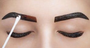 El artista de maquillaje aplica la alheña de la pintura en las cejas en un salón de belleza fotografía de archivo libre de regalías