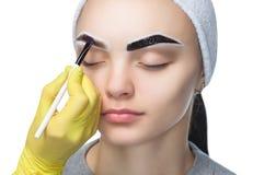 El artista de maquillaje aplica un tinte de la ceja de las pinturas en las cejas de una chica joven fotos de archivo