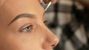 El artista de maquillaje del salón de la belleza pinta las cejas con un cepillo Ropa interior #38 almacen de metraje de vídeo