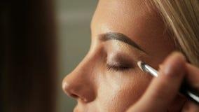 El artista de maquillaje del salón de la belleza pinta las cejas con un cepillo Ropa interior #38 almacen de video