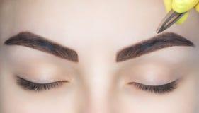 El artista de maquillaje despluma sus cejas de una mujer joven en un salón de belleza imágenes de archivo libres de regalías