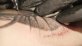 El artista del tatuaje hace el tatuaje en el estudio, tatuando en el cuerpo Cierre para arriba almacen de video