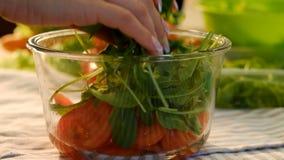El arugula vegetariano de la comida de la ensalada cortó los tomates rueda metrajes