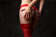 El asno de la mujer en bragas rojas del cordón Foto de archivo libre de regalías