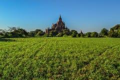El aspecto de la pagoda antigua, y los campos verdes Imagenes de archivo