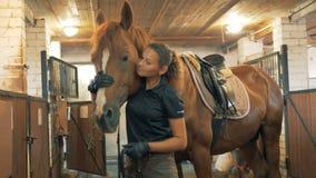 El atleta de sexo femenino acaricia a un caballo, cierre para arriba almacen de video