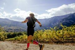 El atleta del corredor de la muchacha que corre en el sol irradia el viñedo del valle Imagen de archivo libre de regalías