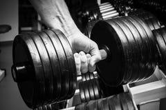 El atleta en el gimnasio imagenes de archivo
