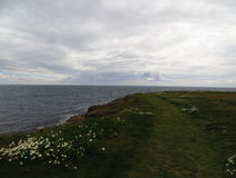 El auf Irische de Blick ve Imagen de archivo libre de regalías