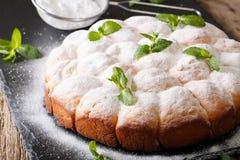 El austriaco dulce rueda el buchteln con el primer del azúcar en polvo Hori fotografía de archivo libre de regalías