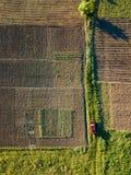 El auto monta en el camino entre los campos para sembrar Imagen de archivo libre de regalías