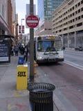 El autobús del MTA al paraíso Fotos de archivo libres de regalías