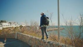 El aventurero masculino camina en el día soleado almacen de video