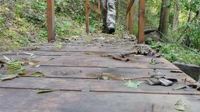 El aventurero pasa el puente en el bosque metrajes