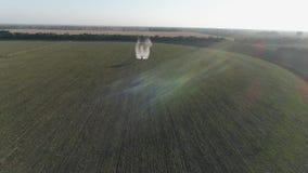El avión de la agricultura vuela sobre campo con trigo y hace el tratamiento químico contra parásitos metrajes
