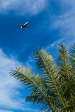 El avión de pasajeros sale Egipto imágenes de archivo libres de regalías