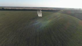 El avión de propulsor del vintage en cielo soleado vuela sobre campo verde con trigo y las sustancias químicas el salpicar contra almacen de metraje de vídeo