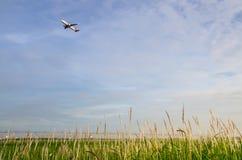 El avión saca con la hierba verde Foto de archivo libre de regalías