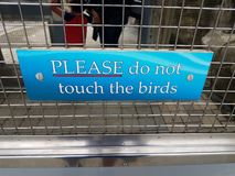 El azul no toca por favor los pájaros firma en puerta del metal imágenes de archivo libres de regalías