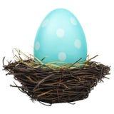 Huevo de Pascua grande azul en una jerarquía del pájaro en blanco Fotografía de archivo libre de regalías