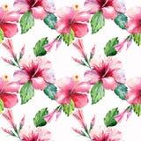 El azul violeta rosado tropical de Hawaii del modelo floral maravilloso tropical herbario verde claro del verano florece la acuar Imágenes de archivo libres de regalías