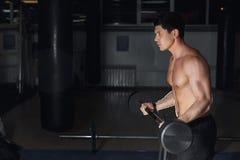 El bíceps de ejecución de In The Gym del atleta joven se encrespa con un Barbell Copie el espacio fotos de archivo libres de regalías
