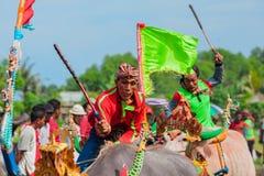 El búfalo de agua tradicional del Balinese compite con Makepung en Negara Fotografía de archivo libre de regalías